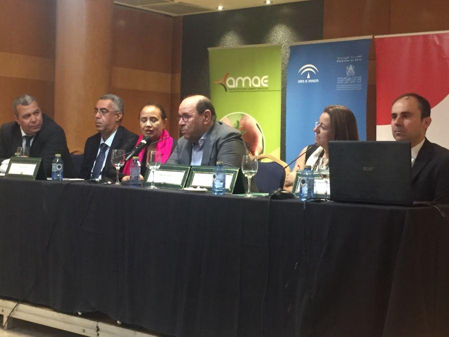 بوصوف يدعو من ألميرية الإسبانية إلى مبادرة أممية من أجل التدريس في إطار التنوع